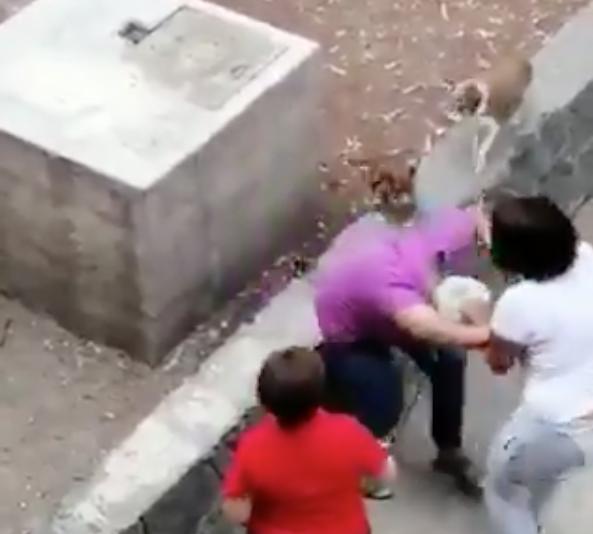 Graban a joven atacando a golpes a mujer adulta mayor en Tlatelolco