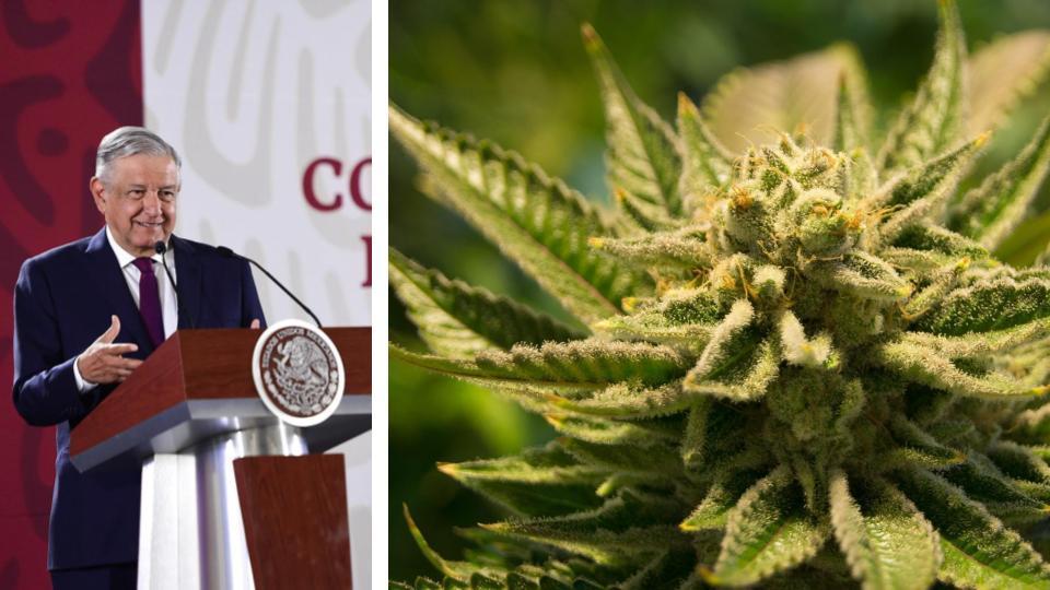 AMLO va por legalización de drogas