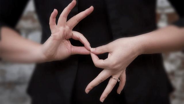 El lenguaje de señas no puede ser 'en vez' del inclusivo