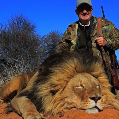 'oferta' 2x1 para cazar leones causa polémica